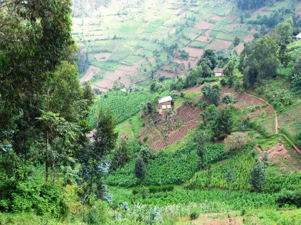 Rwanda10